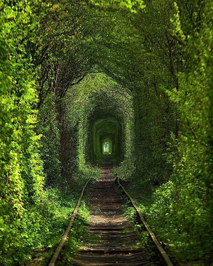 Tunnel of love in Klevan, Ukraine...would you go? I would!!!