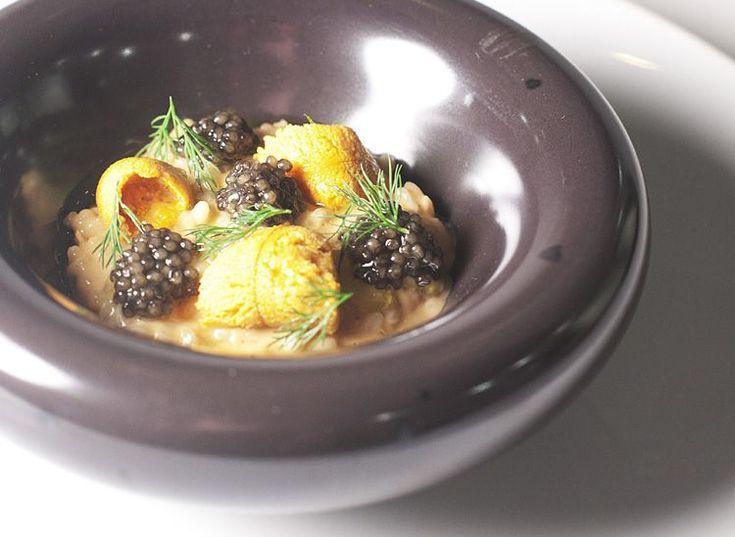 110 best caviar salmon eggs sea urchin uni lump fish for Caviar fish eggs