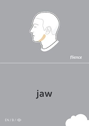 Jaw #CardFly #flience #human #english #education #flashcard #language