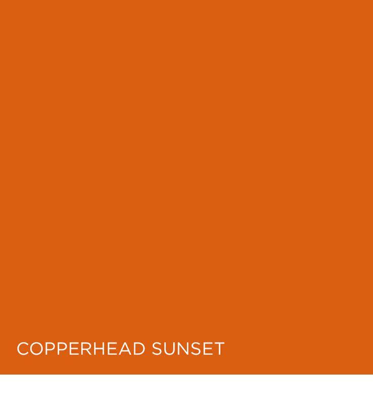 71 Best Valspar Championship In Color Images On Pinterest