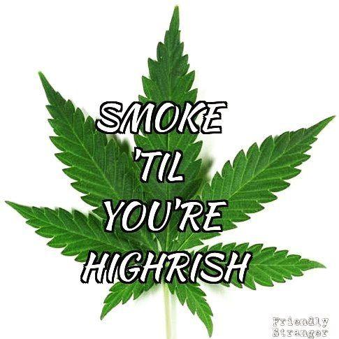 Happy St Patrick's Day from The Friendly Stranger! #stpatricksday #stpaddysday #stpaddys #smoketilyourehighrish #friendlystranger #thefriendlystranger #keepitgreen #its420somewhere #cannabis #marijuana #weed #cannabisculture #canadianstoners #torontostoners #marijuanamovement #cloudsovercanada #gettingbaked #highlife #hotboxtheinternet #smokeweedeveryday #toke #cannabiscultureshop #toronto #smokeshop #buylocal #qwcc #queenwestclassicsclub #6ix #puffpuffpass