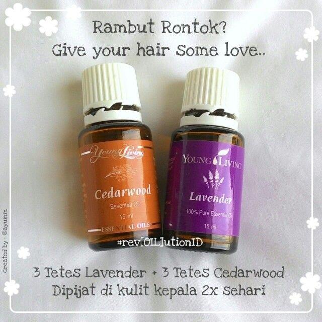 Punya masalah rambut rontok? Cedarwood dan Lavender Essential Oil bisa bantuin nih.. Cara pakenya gampang banget, 3 tetes lavender + 3 tetes cedarwood dipijat dikulit kepala 1-2x sehari setiap hari..