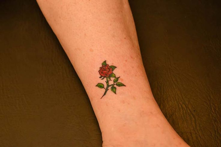 Small rose tattoo illustrator tattoo new me for Small rose tattoo tumblr