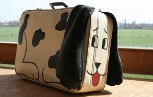 nu nog oude koffer zoeken