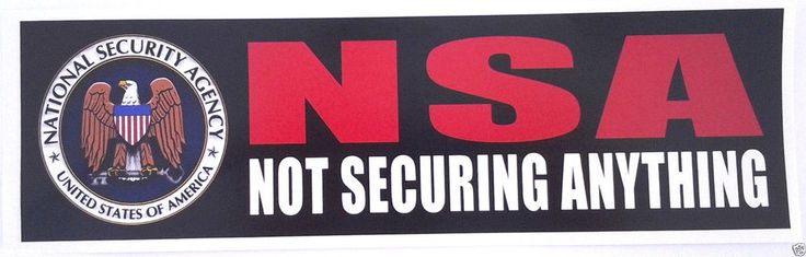 NSA NOT SECURING ANYTHING   Anti-Hillary Bumper Sticker L