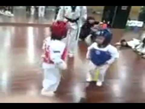 The Most Intense Taekwondo Fight Ever (Street Fighter Remix!!!).  By Blade3534