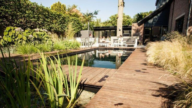Aménagement jardin paysager moderne avec coin de détente en 80 idées
