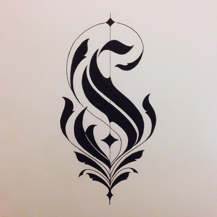 very sexy 'S' #calligraphycurves is where you will see my pictures