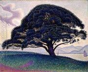 The Bonaventure Pine, 1893  by Paul Signac