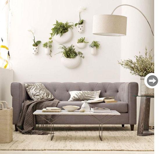 Pillows, plants on wall, gray sofa