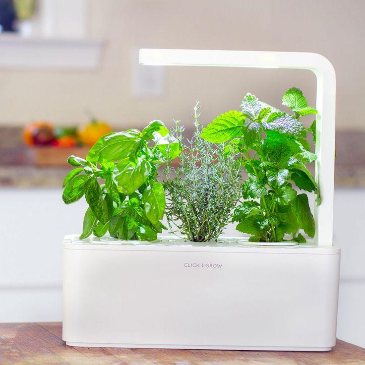 Développez votre main verte avec ce Jardin d'intérieur intelligent Click & Grow en cultivant vos herbes aromatiques. Plus besoin de jardin ni de balcon !