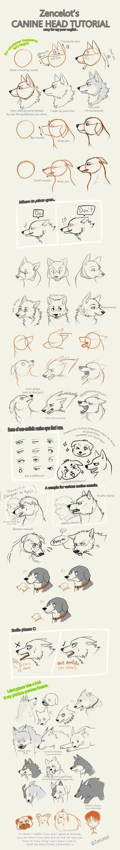 How to draw wolf heads. So cute and detailed!