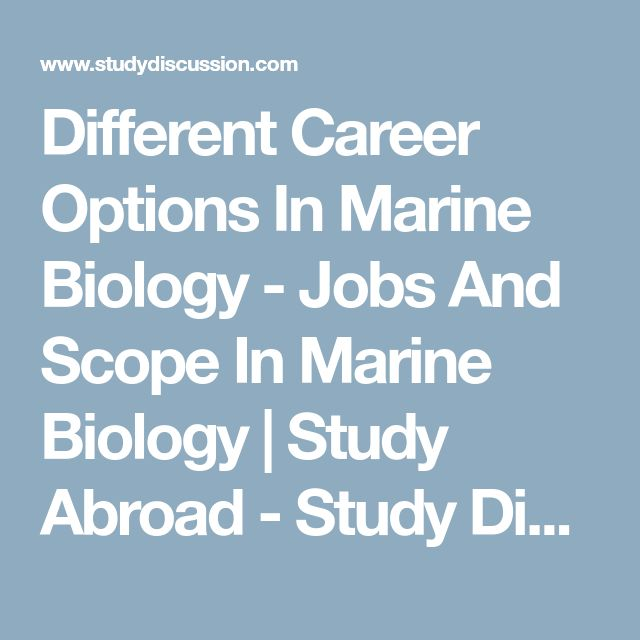 Different Career Options In Marine Biology - Jobs And Scope In Marine Biology | Study Abroad - Study Discussion