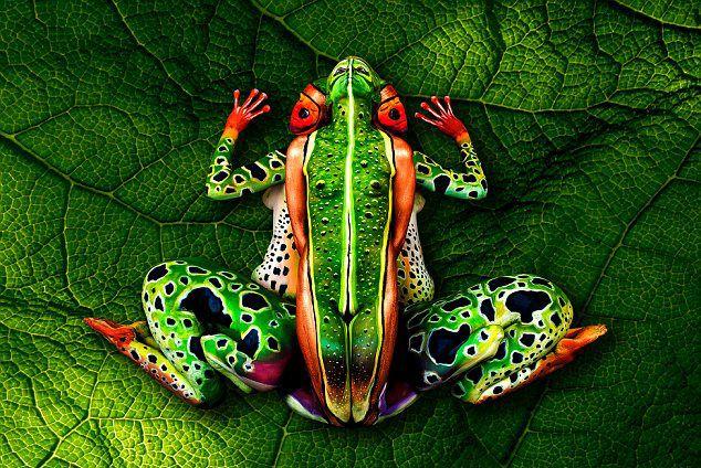 Pictures – german.china.org.cn – Des œuvres d'art incroyables   – Wirklich Bodypaint?