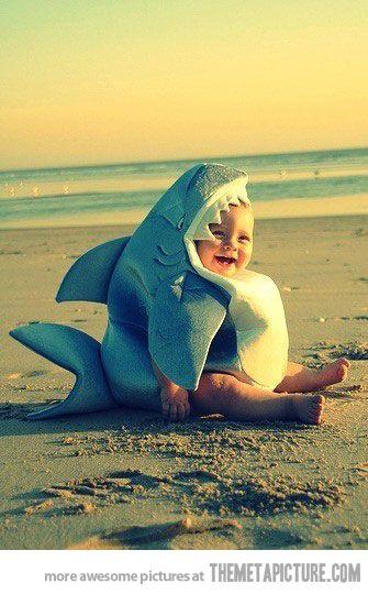 Baby shark a-doo-doo-doo-doo, baby shark a-doo-doo-doo-doo . . .