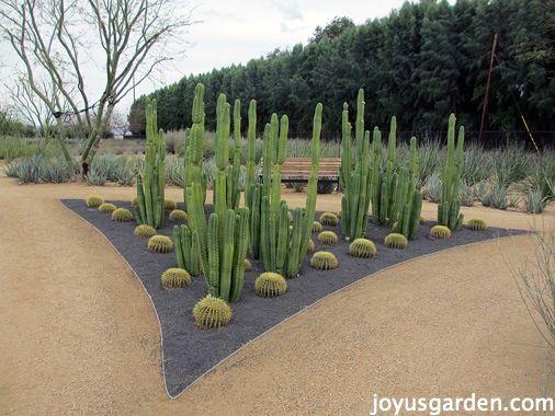 601 best Desert garden planters and pots images on Pinterest ...