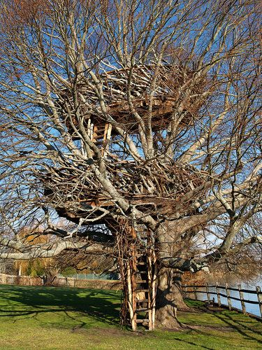 10 Of The World's Most Amazing Tree Houses - Roderick Wolgamott Romero, Lake-Nest Tree House, New York (USA)