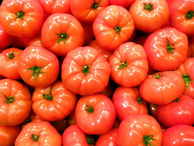 wikiHow to Grow Hydroponic Tomatoes -- via wikiHow.com