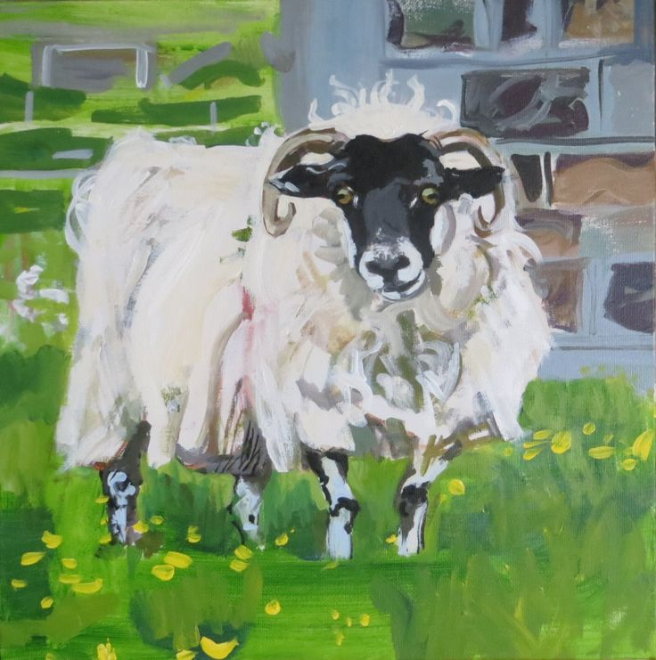 Robyn McGraw, Isle of Barra sheep,  Outer Hebrides, painting of a sheep