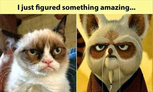 Master Shi Foo is Grumpy Cat.. or they're closely related.