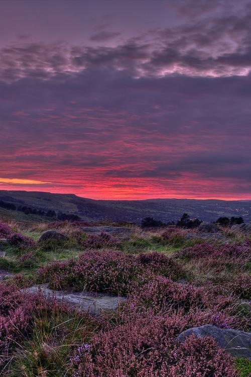 'On Ilkley Moor, Bar t'at!' Ilkley Moor, West Yorkshire. This gorgeous pic was taken just a few miles from Leeds City Centre! <3