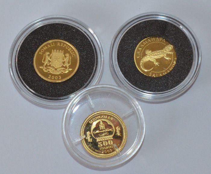 Wereld - Somalië (30 shillings 2003) Mongolië (500 Togrog 2003) Oekraïne (2 Hryvni 2003) - 1/25 oz (x3) goud  3 gouden kleine munten in muntcapsules. 1. Somalië 30 shillings 2003 - King Salamon2. Mongolië 500 Togrog 2003 - Chinggis Khan3. Oekraïne 2 UAH 2003 - Caaamahapa SalamandraGoud 999/1000 11 mm 1/25 ounce / 124 gram. Met certificaat van echtheid.Zie afbeeldingen voor een eigen indruk. Aangetekende verzending. (50-1331).Deze aanbieder heeft wekelijks /- 500 veilingitems.Bekijk het…
