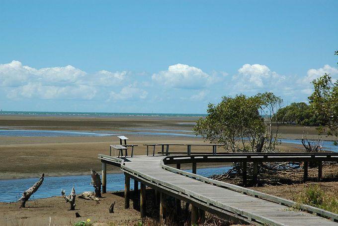 Nudge Beach Reserve Boardwalk