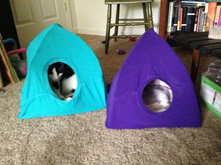 My DIY Cat tent and link to how to instructions! //.handimania.com/ diy/old-t-shirt-cat-tent.html   make.   Pinterest   Diy cat tent Cat tent and ... & My DIY Cat tent and link to how to instructions! http://www ...