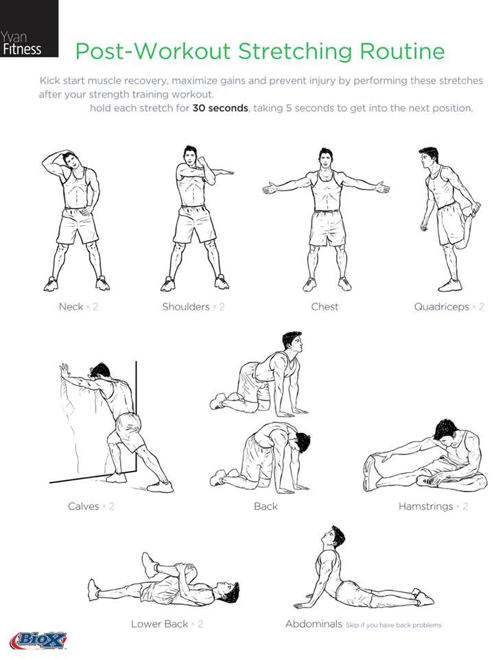 Best 25 Pre Workout Stretches Ideas On Pinterest