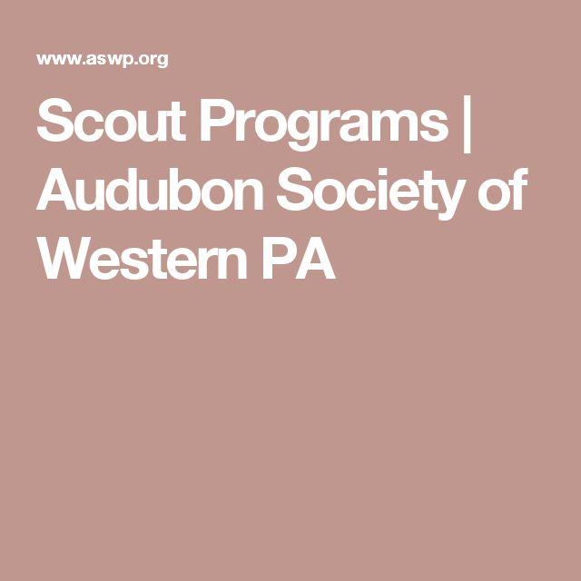 Scout Programs   Audubon Society of Western PA