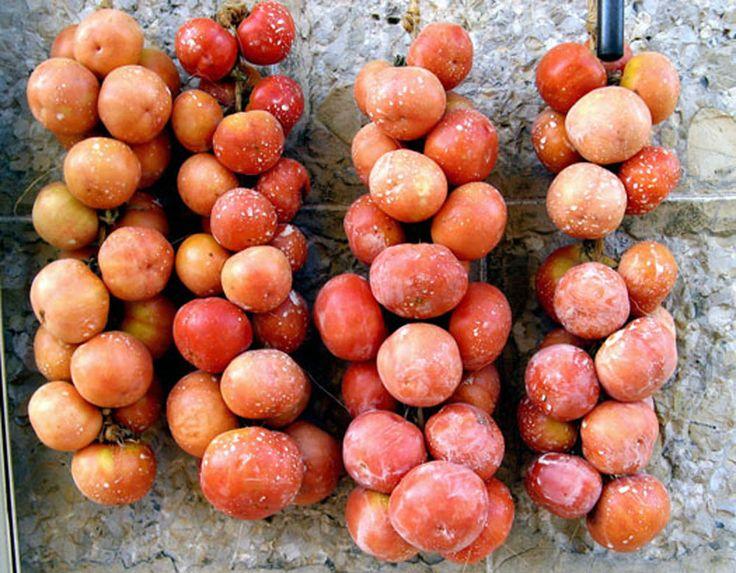 15 graines de TOMATE COLGAR (Tomate de garde de Majorque à suspendre) Tomaquet in | eBay
