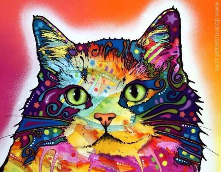 Cat, feline, colorful, art, painting