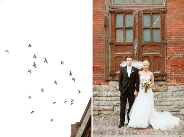 wedding photography columbus ohio red gallery photography via vecchia winery