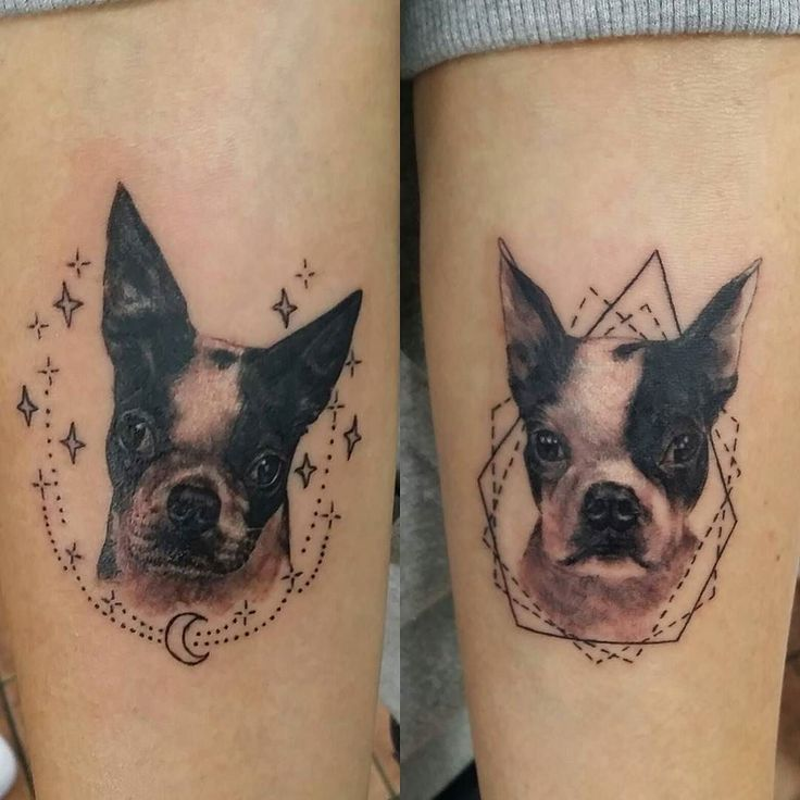 Best 25 Rememberence Tattoos Ideas On Pinterest: Best 25+ Pet Memory Tattoos Ideas On Pinterest
