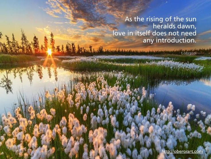 "I got inspired by this picture and thought of these words: ""As the rising of the sun heralds dawn, love in itself does not need any introduction.""  Please feel free to share it or leave a comment. My photographs and poems can be seen on my website, oberoiart.com"