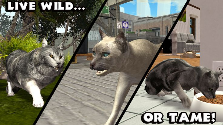 Ultimate Cat Simulator - Google Play Store Top Apps | App Annie