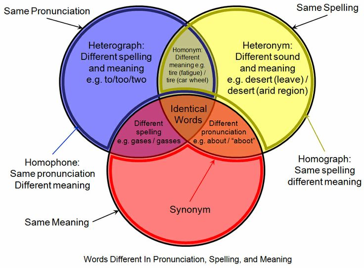 141 best venns images on pinterest venn diagrams american and homographhomophonevenndiagram from the private library ccuart Choice Image