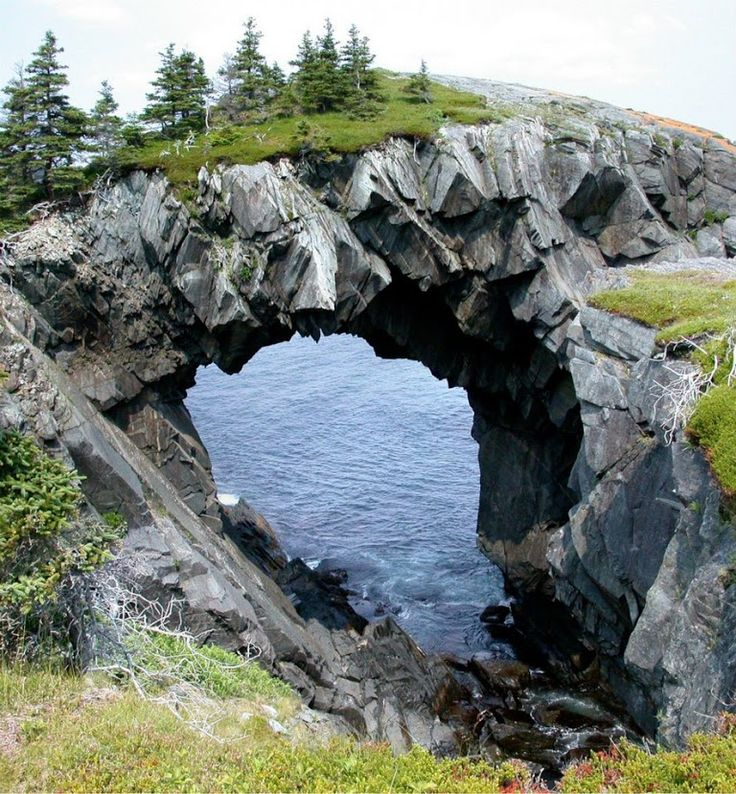 Photo: Berry Head Arch, Newfoundland, Canada. This magnificent sea arch is located on the Spurwink Trail, along the East Coast Trail. To get to the arch, find the East Coast Trail trailhead at Port Kirwan. From here, it is about a 4.75-mile one way hike to the arch. The hike is moderate but extreme caution is required at points where the trail skirts the edge of some rather high cliffs. Follow  +AmiPlanet                    #nature #canada #travel #amazing #pictures