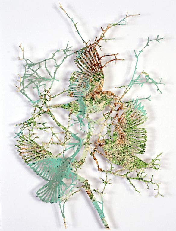 claire brewster | birds cut from maps