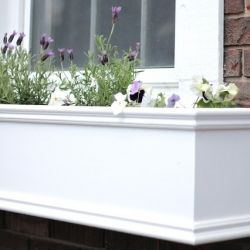 Add character and charm to your home by creating window planter boxes!