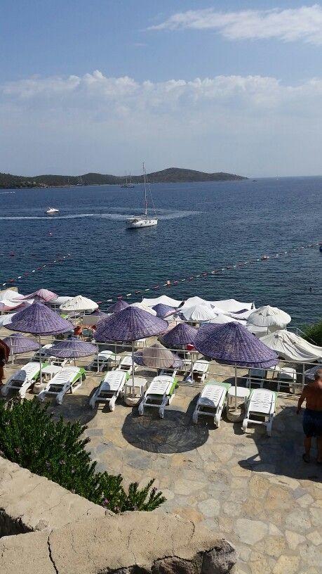 Mor Plaj BİTEZ