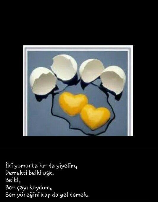 Iki yumurta bir aşk