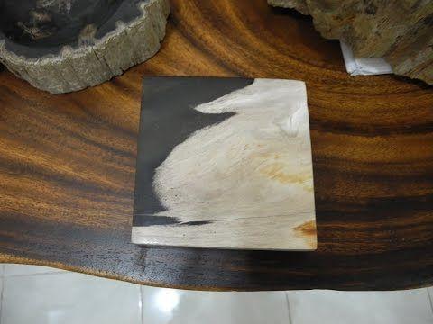 Petrified Wood Slabs | Fossil Wood Tile - YouTube