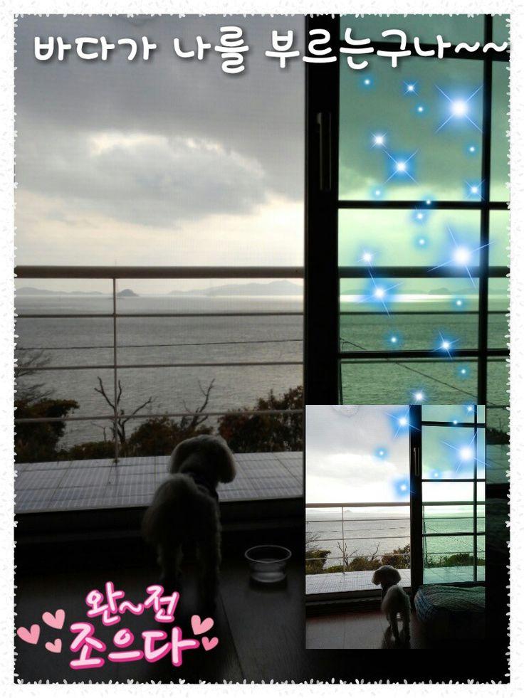 see~~ sea~~
