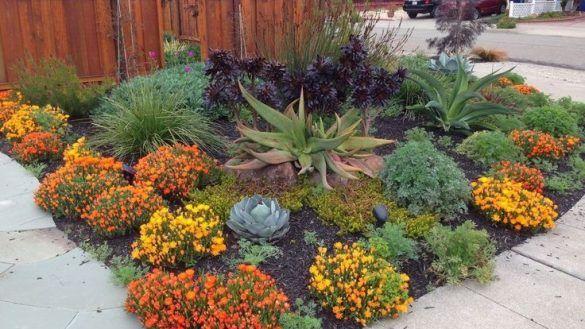 Interior 380 Best Gardening Images On Pinterest Small Ga
