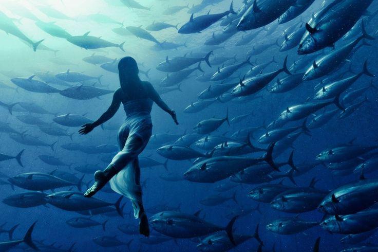 La nageuse synchronisée japonaise Saho Harada