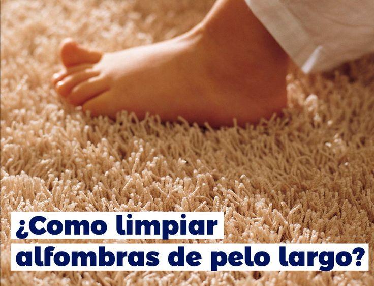 Conoce como limpiar las alfombras de pelo largo