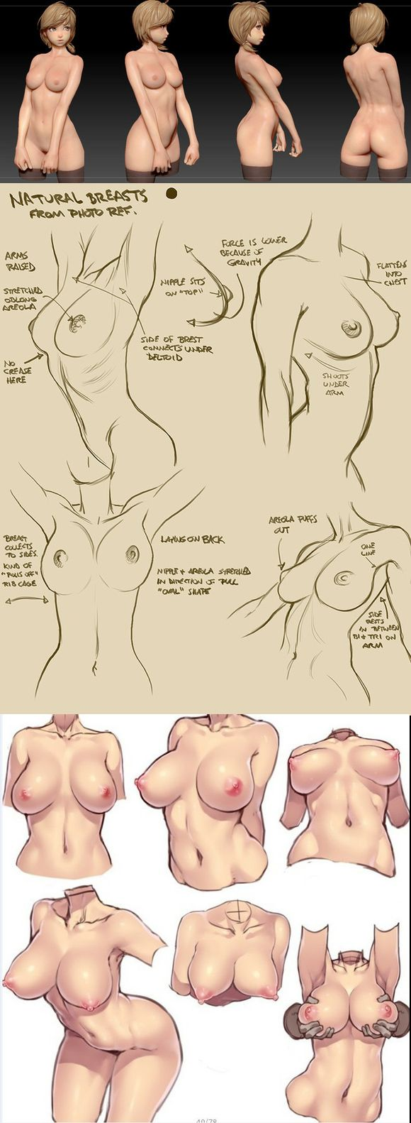 female anatomy practice