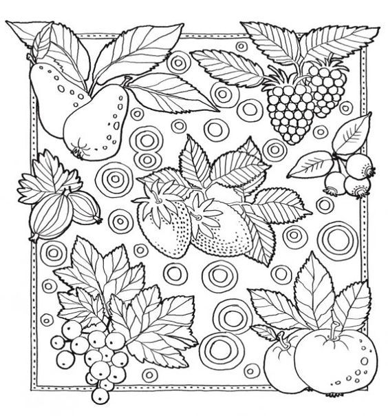 138 Best Coloring Fruit Vegetable Images On Pinterest