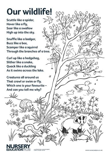 Read this fun poem to your children to inspire their imaginations before role play, wildlife-spotting activities or creative play.